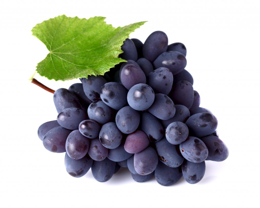Grape Codreanca: characteristic