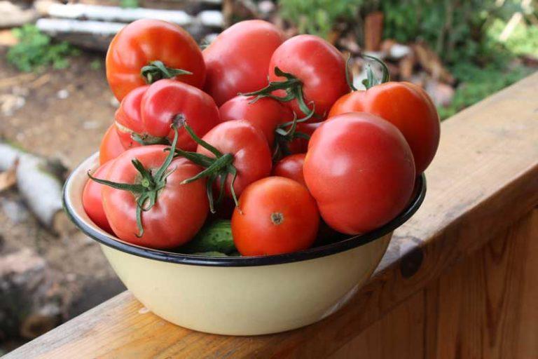 Determinant Tomatoes