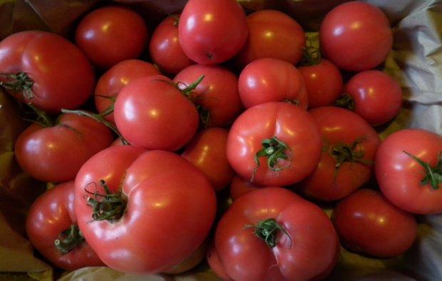 Determinant Tomatoes Doll Masha