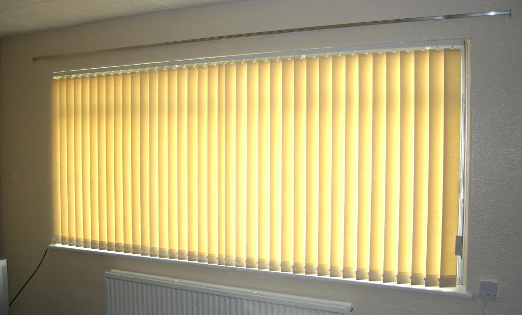 vertical blinds on the windows