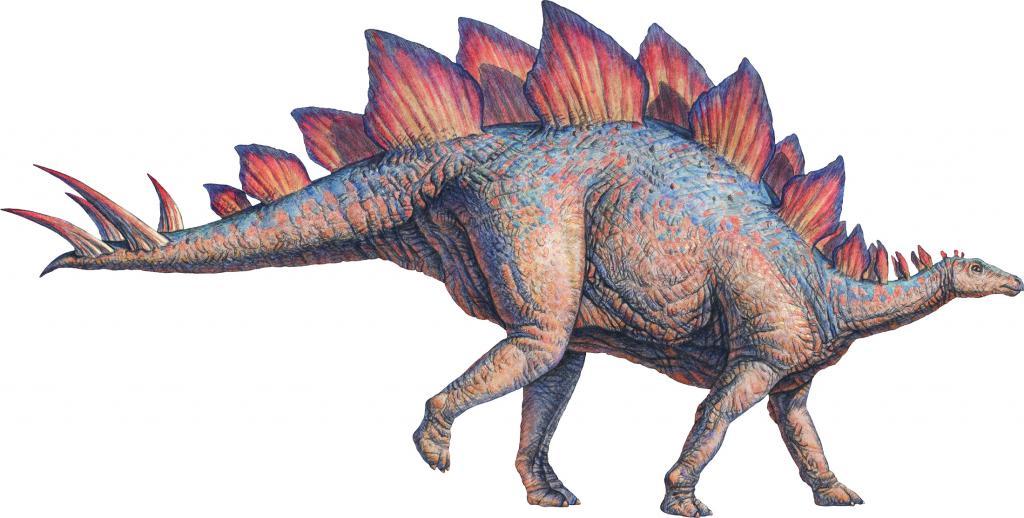 2425754 Динозавр из пластилина своими руками пошаговая инструкция || Динозавр из пластилина своими руками пошаговая инструкция