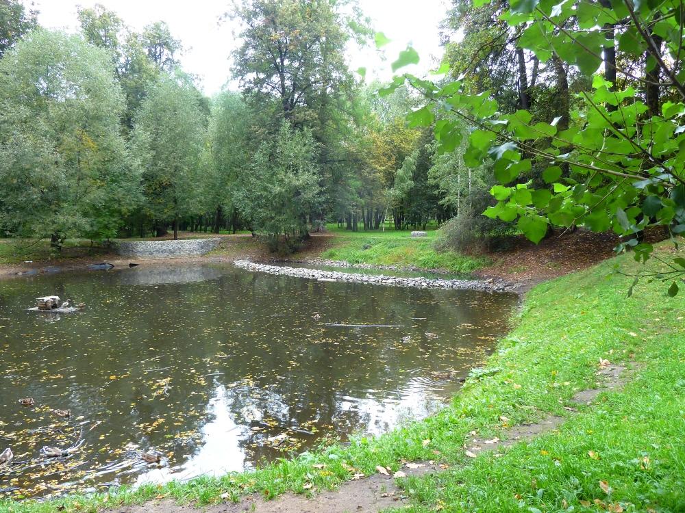 Pond in Grachevsky park