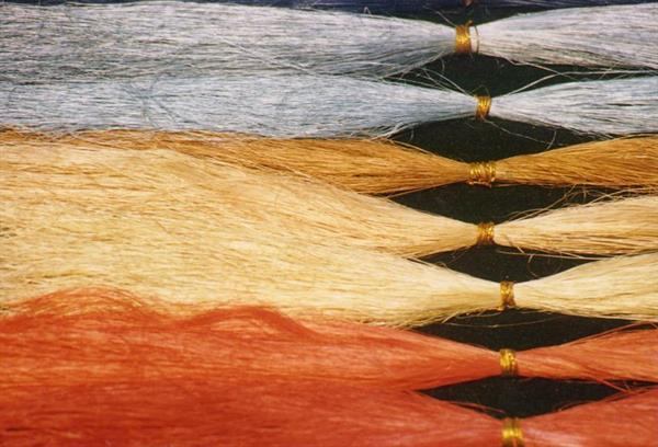 processed sisal fibers