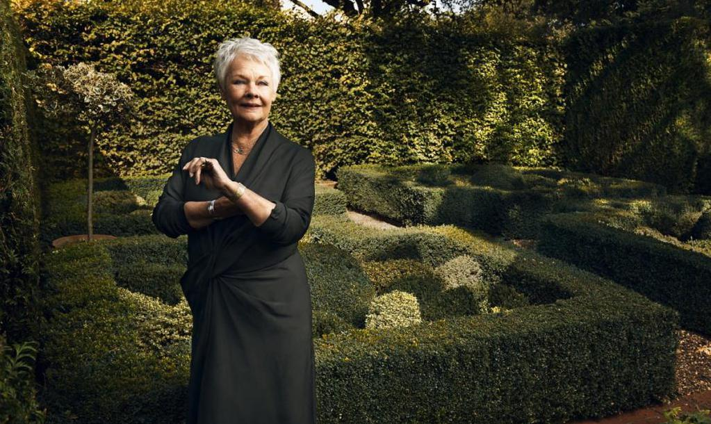 Judi Dench on a green background
