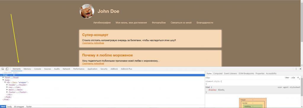 Developer dashboard in browser
