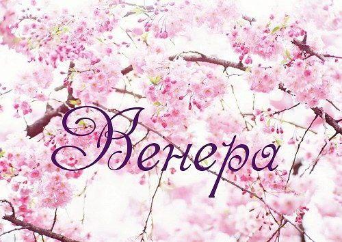 Первая, картинки с именем венера