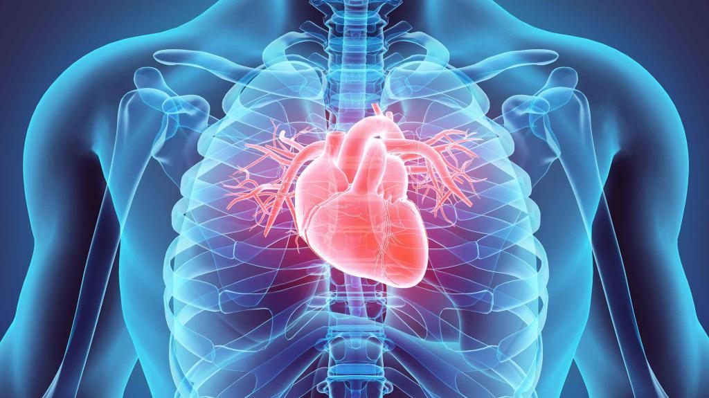 кардиомагнил инструкция аналоги