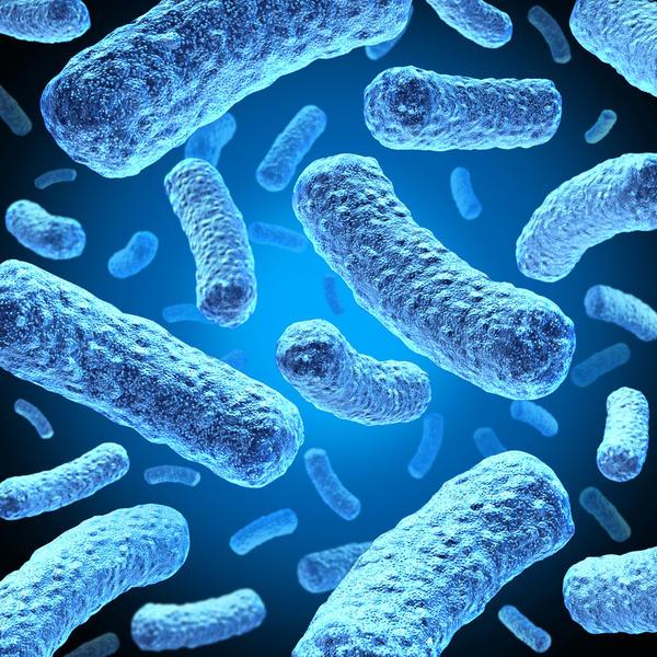 гнойный бактериальный менингит