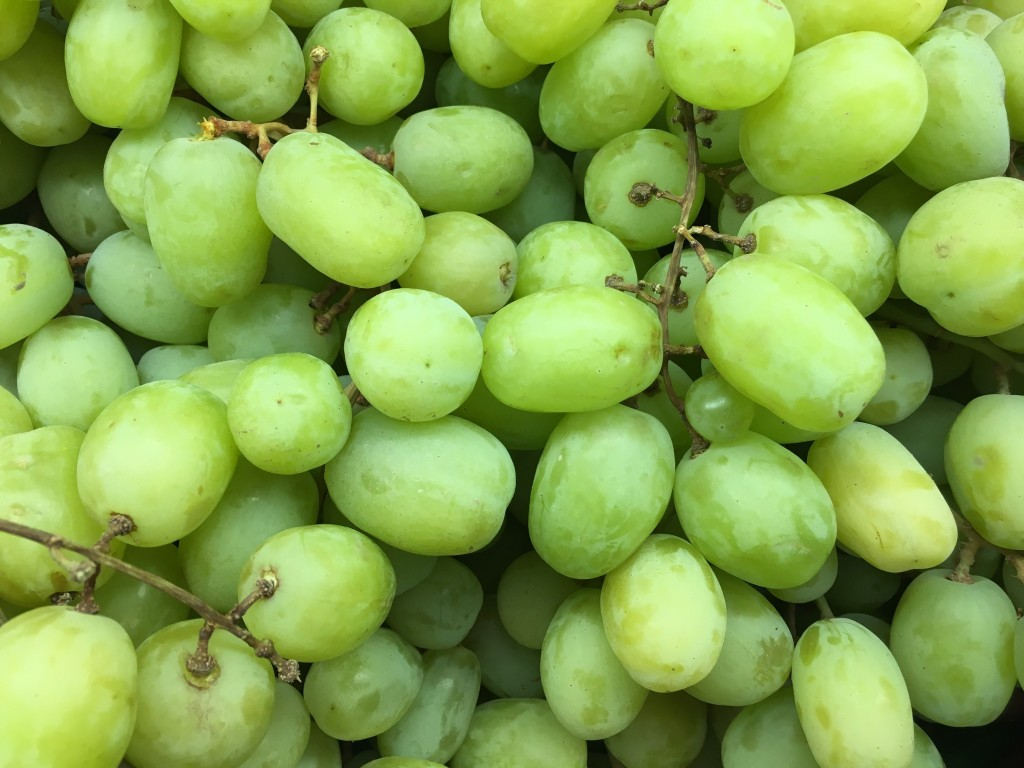Grapes Augustine: reviews