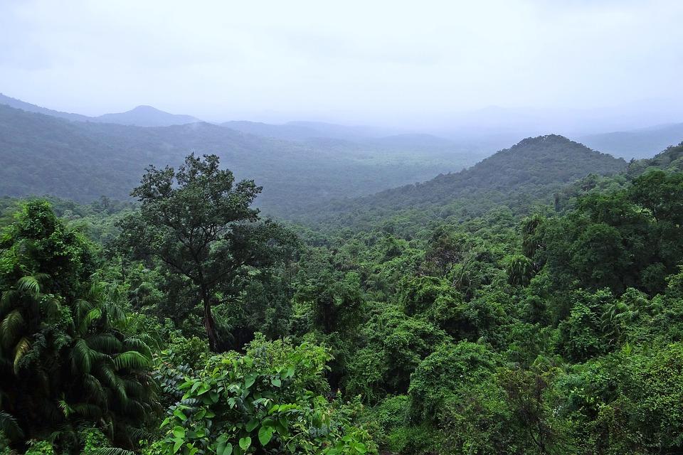 nature of Goa