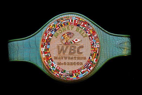 WBC Money Belt Unique Belt