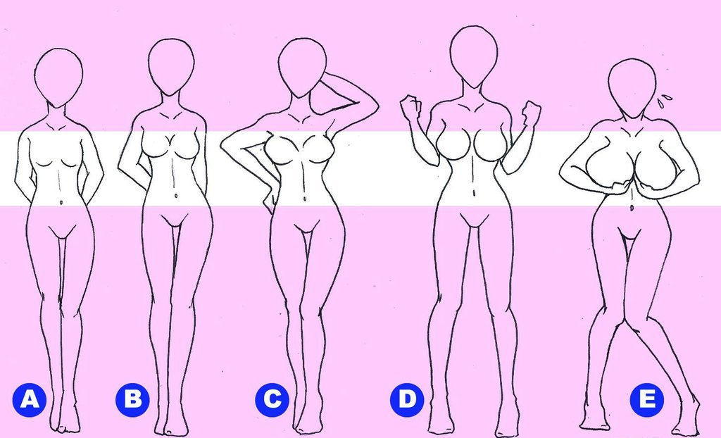 Sized breasts sizes