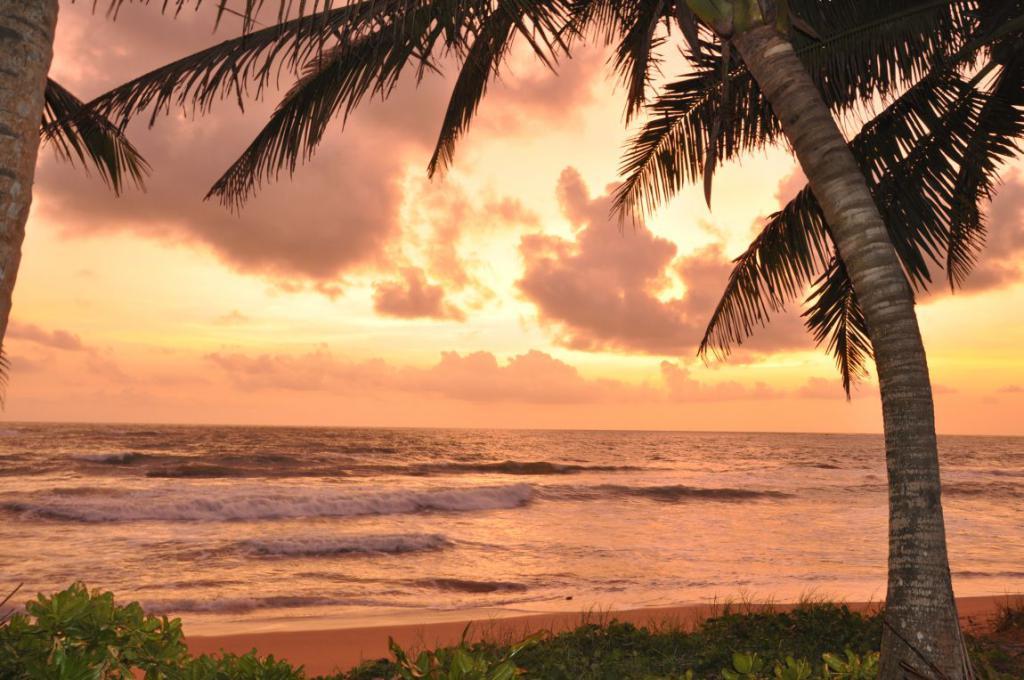 View of the beach Induruwa Beach Resort 3 *
