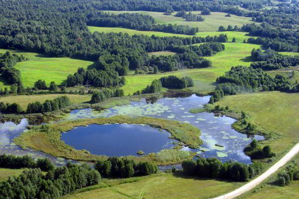 Леса и озера заповедника