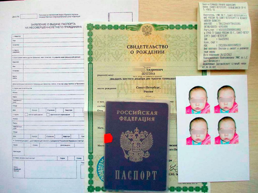 Application for international passport and documents for filing a request