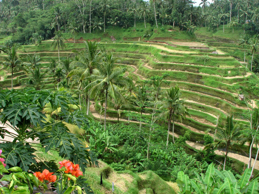 Bali photo sights