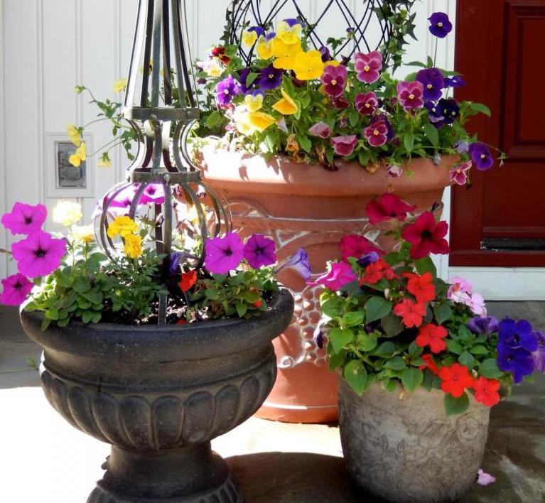 Flower Pot Shapes