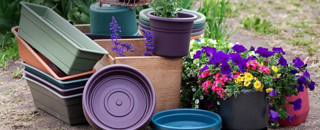 We buy flower pots