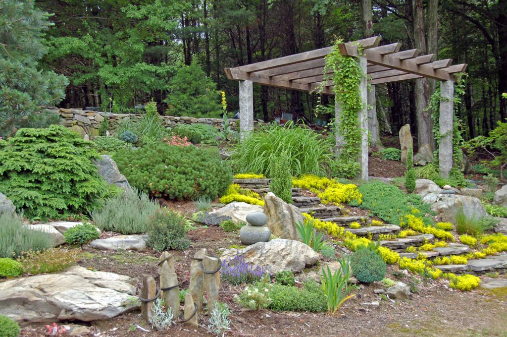 Alpine Hill at the cottage photo