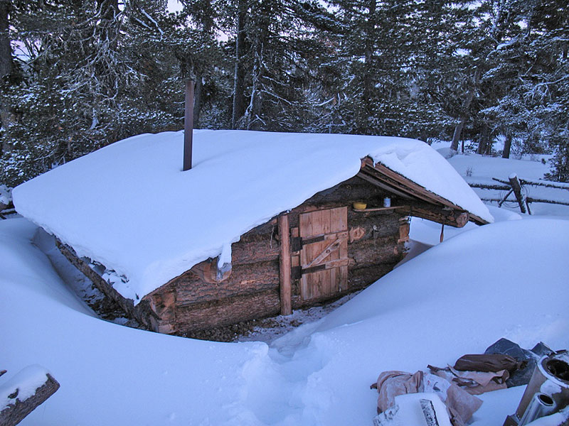 Wintering in the taiga