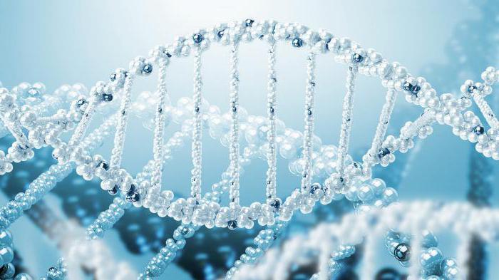 population-based statistical method for studying human genetics