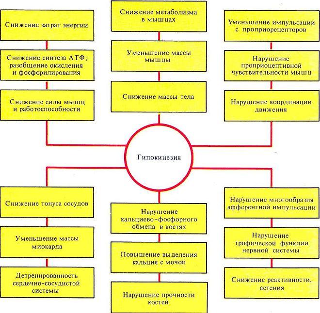 гипокинезия клиническая