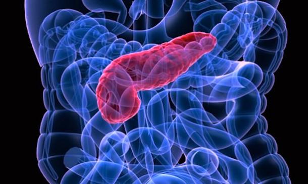 амилаза панкреатическая повышена в крови причины