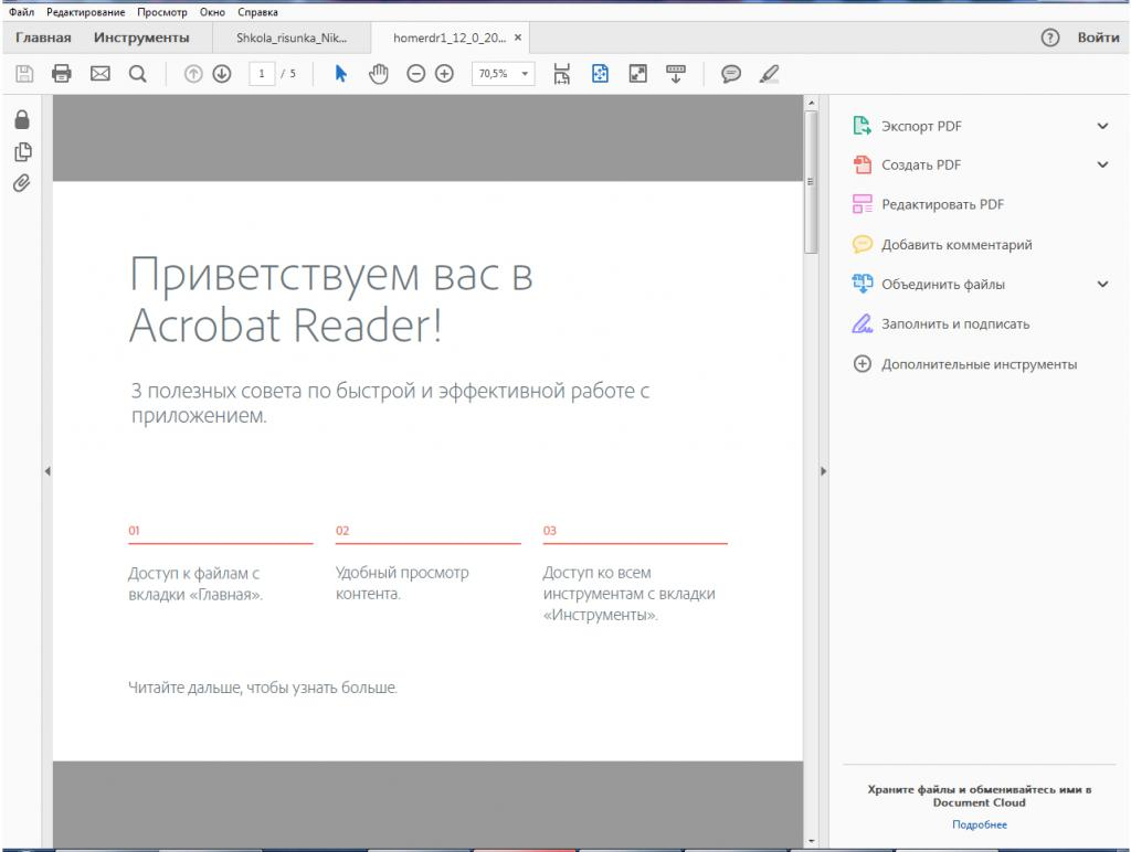 Программа Adobe Reader DC