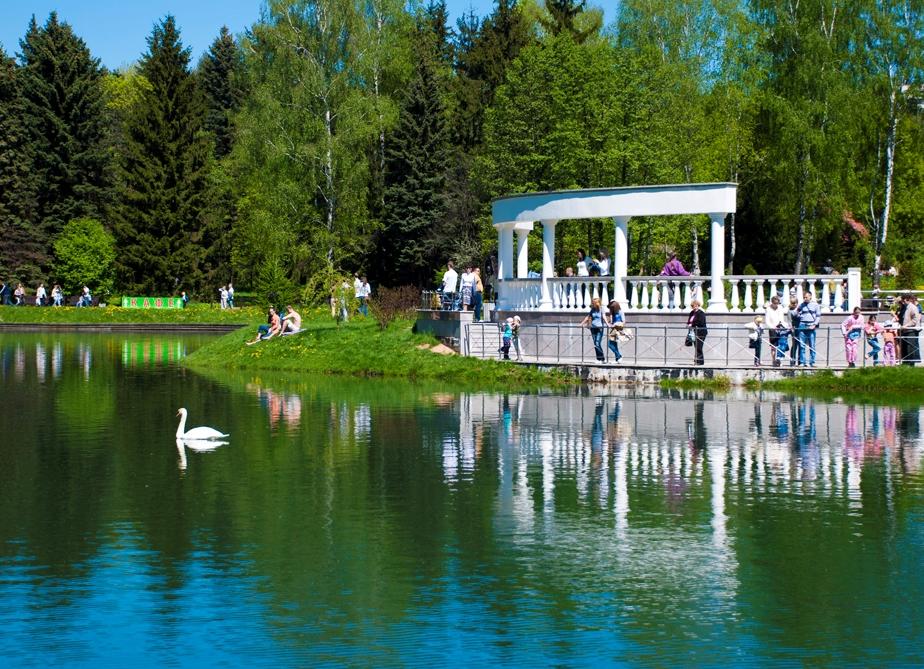 plants of the botanical garden Minsk