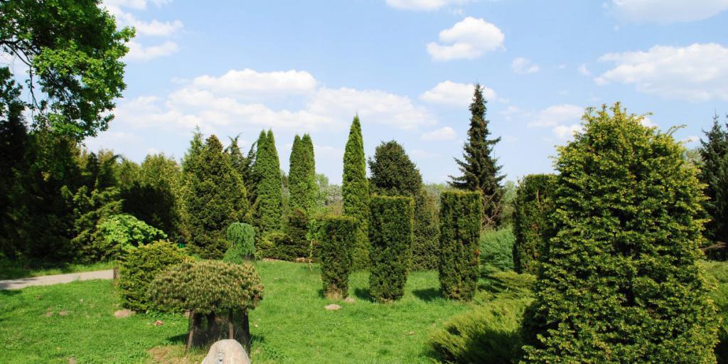 Central Botanical Garden Minsk