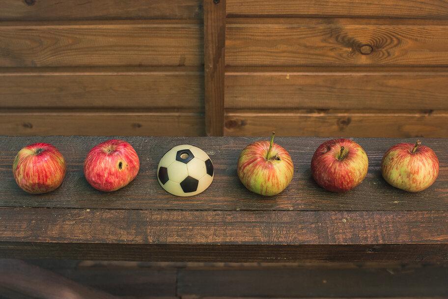 Загадки про яблоко гадаем, в яблочко ответом попадаем ...