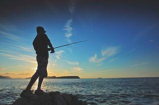 К чему сниться кость от рыбы