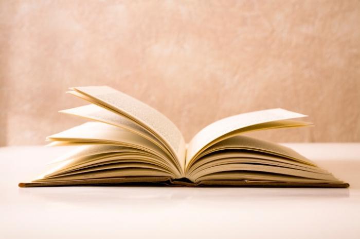 реализм в литературе