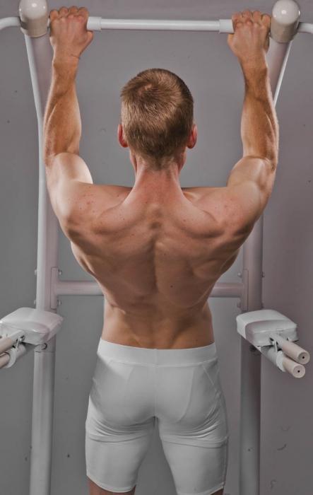 Какие мышцы работают при