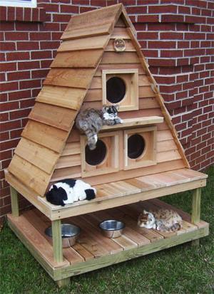 Домик из дерева для кошки своими руками