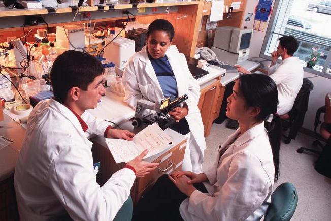 Основные этапы научного исследования