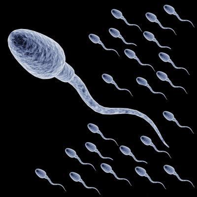 sperma-kak-vliyaet-na-zhenskiy-organizm