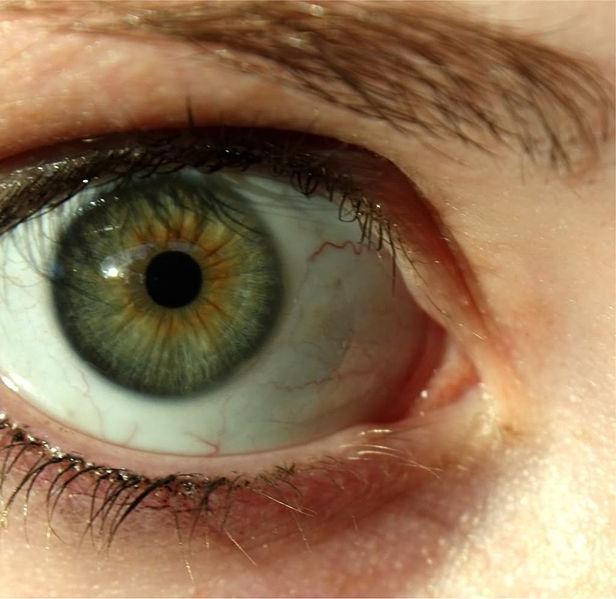 Зеленые глаза значение и влияние на