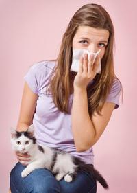 cat allergy treatment