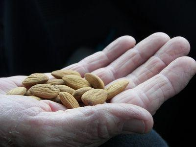 how is almond nut useful