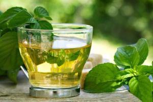 medicinal herbs for weight loss