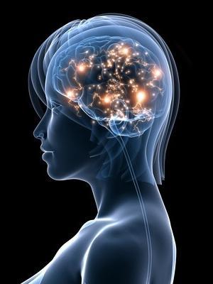 Language and consciousness