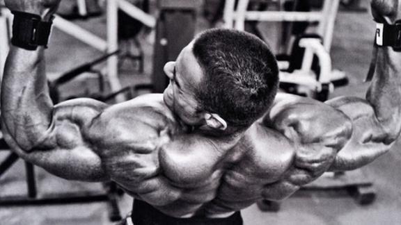 лучшие упражнения на плечи.