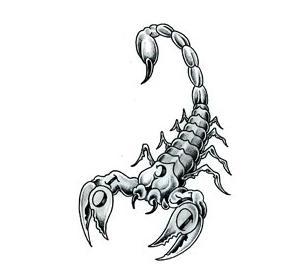 с каким знаком зодиака уживется скорпион