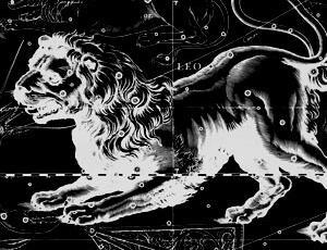 Compatibility horoscope Leo and Sagittarius