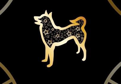 Картинки по запросу собака знак