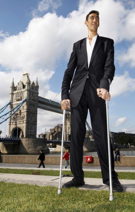 Самый высокий в мире человек. Самый высокий человек в России :: SYL.ru