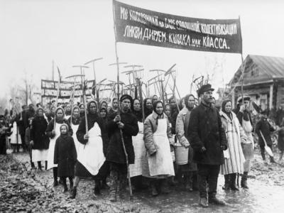 The reasons for the collectivization of agriculture