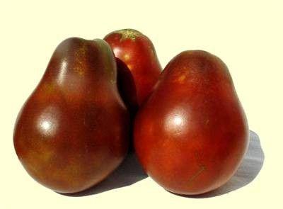 Tomato Japanese Truffle