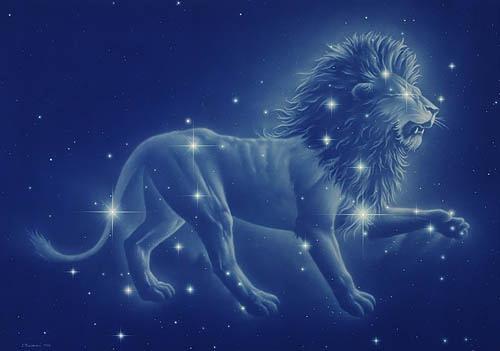 compatibility male lion female lion